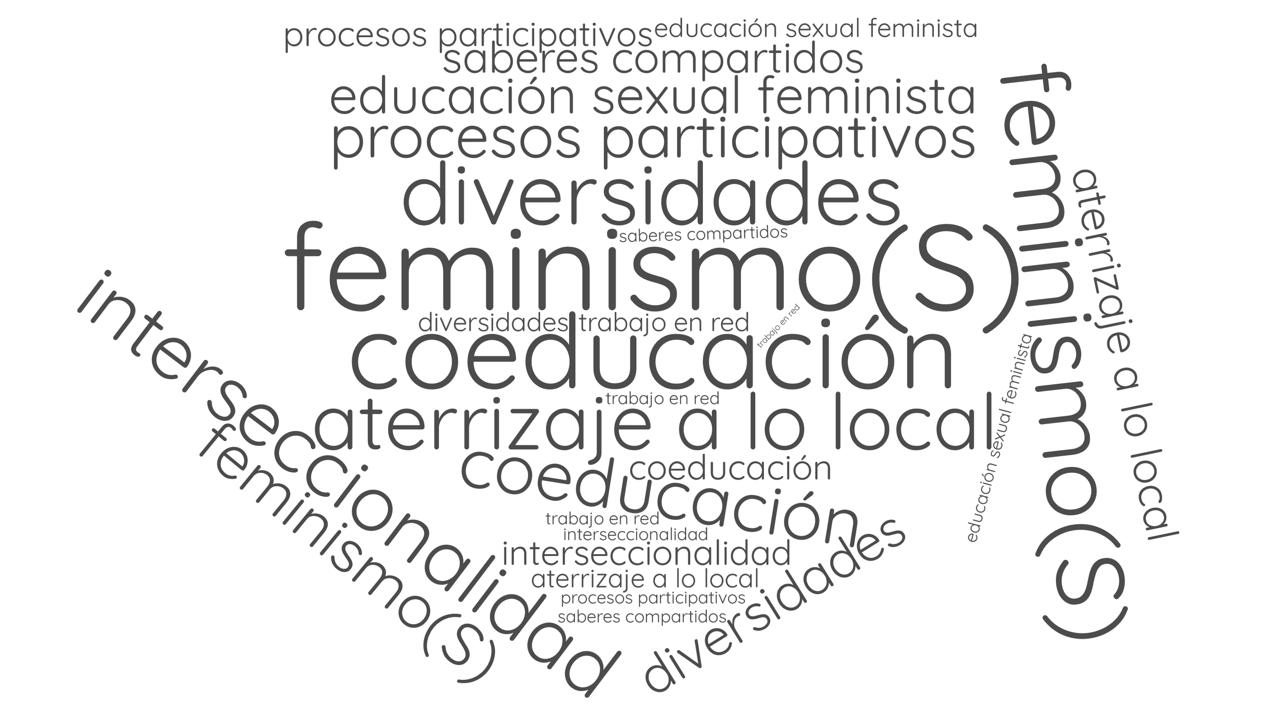 Feminismo(s) Coeducación Educación sexual feminista Interseccionalidad Diversidades Interculturalidad Trabajo en red Saberes compartidos Aterrizaje a lo local Procesos participativos